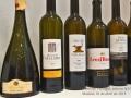 1-Cata en la UEC, selección de vinos portugueses