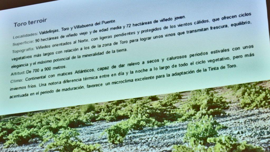 "Bodega ""Teso La Monja"" en la DO.Toro, proyecto de Viñedos y Bodegas SIERRA CANTABRIA"