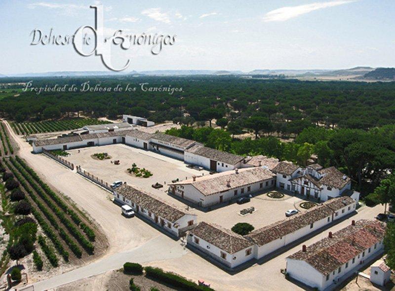 Dehesa de los Canónigos, una de las grandes fincas históricas de la Ribera del Duero. Pesquera de Duero, (Valladolid) – España