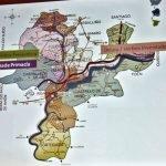 Mapa vitícola de la DO. Ribeiro